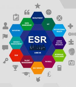 ESR component diagram