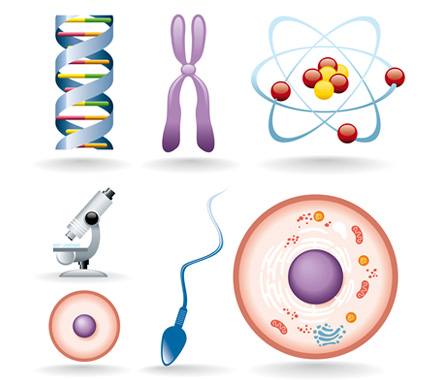 Glossary of Genetic Terms