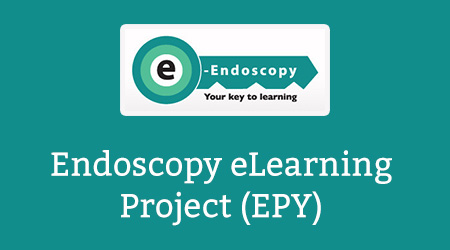 Endoscopy eLearning Project (EPY)