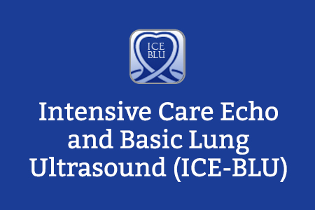 Intensive Care Echo and Basic Lung Ultrasound (ICE-BLU)