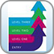 IT skills pathway programme badge