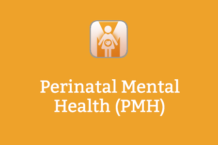 Perinatal Mental Health (PMH)