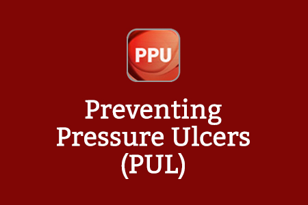 About The Preventing Pressure Ulcers Programme