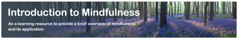 Introduction to Mindfulness_banner_v2