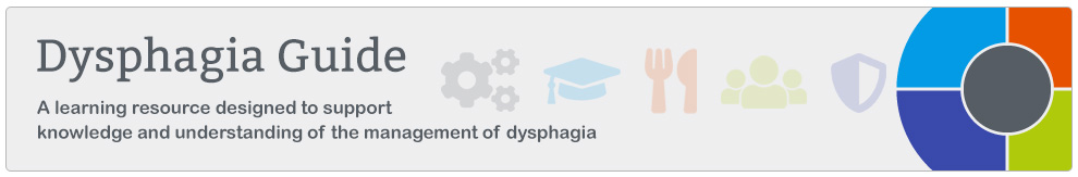Dysphagia programme_Banner