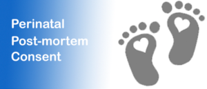 Perinatal Post Mortem Consent