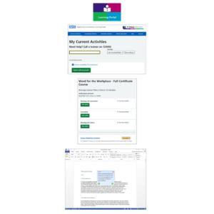 DLS Learning Portal