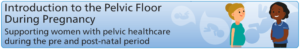Introduction to the Pelvic Floor during Pregnancy_Banner