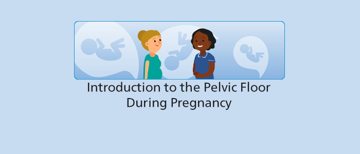 Introduction to the Pelvic Floor During Pregnancy programme